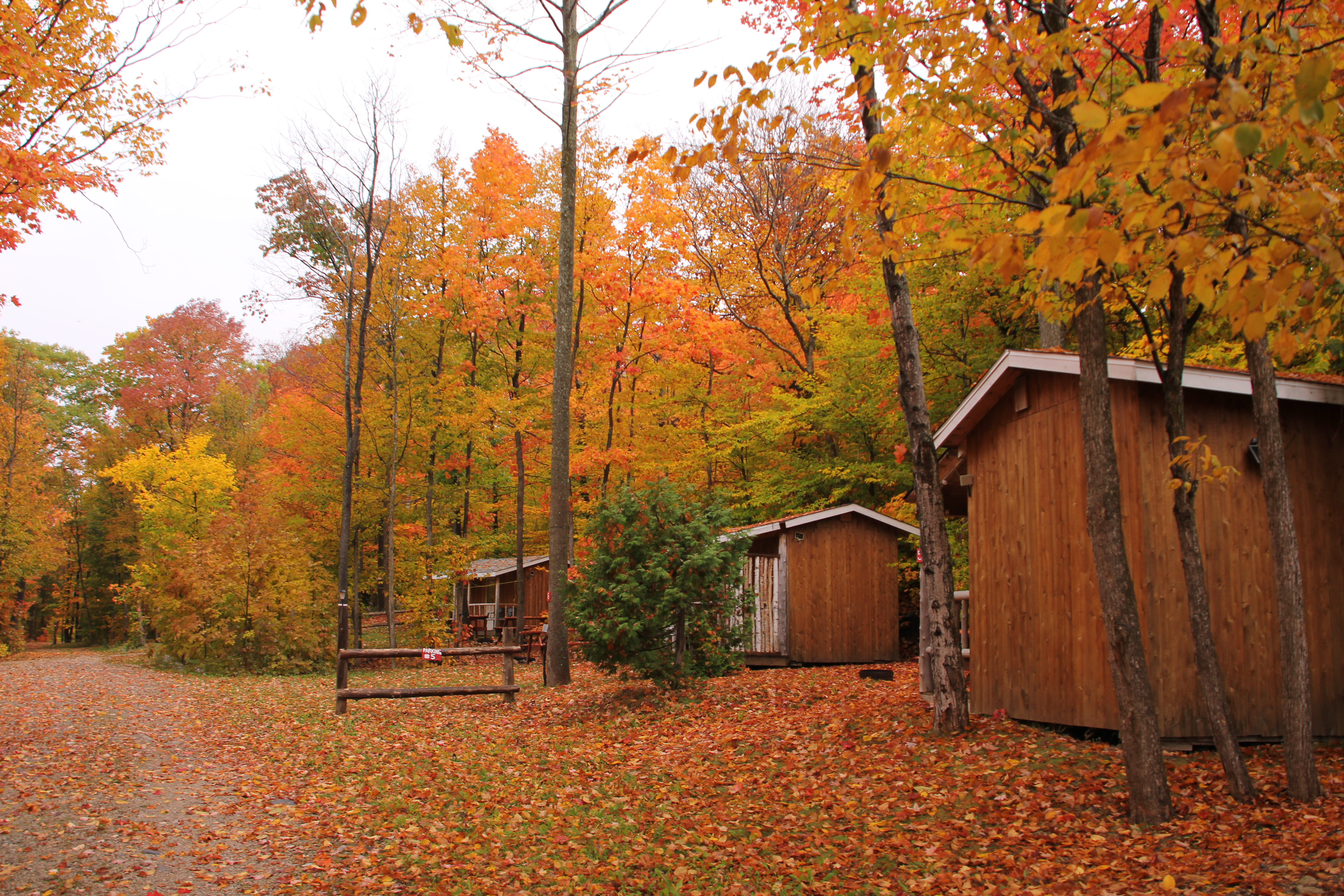 Camping cabins, manitoulin island, cedar wood