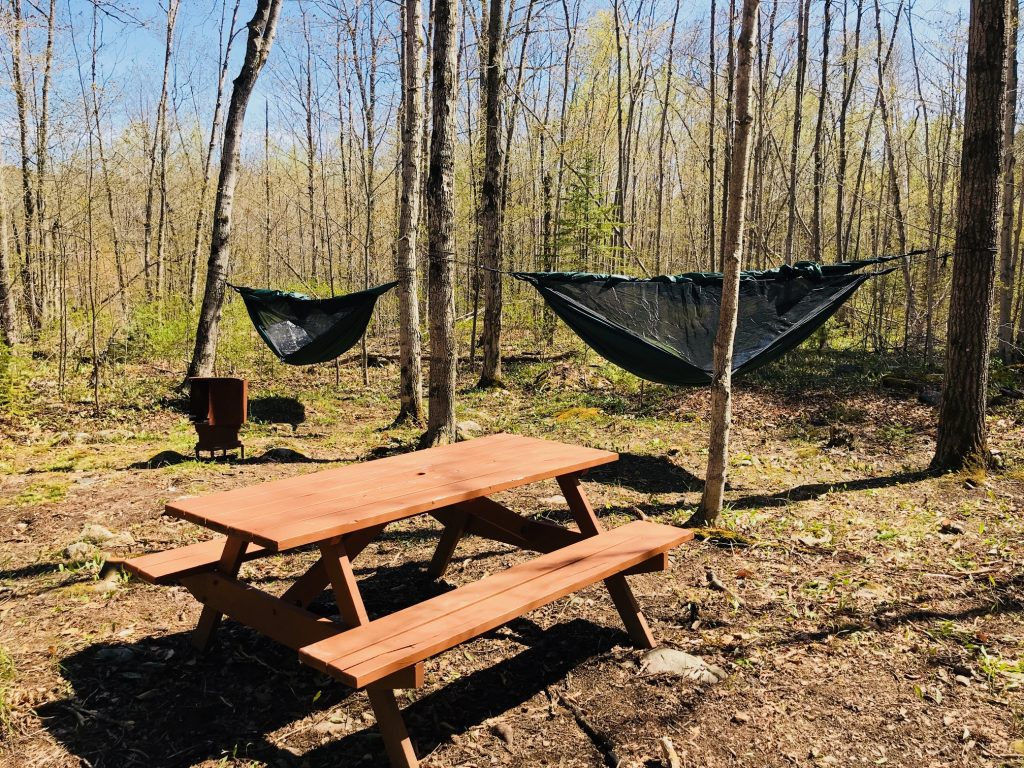Hammock camping is one of our newest accommodations located in our forest camping area.